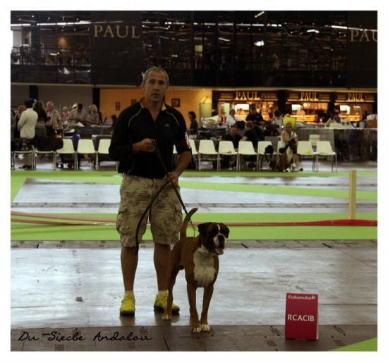 Championnat Mondiale Paris Villepinte, Juillet 2011