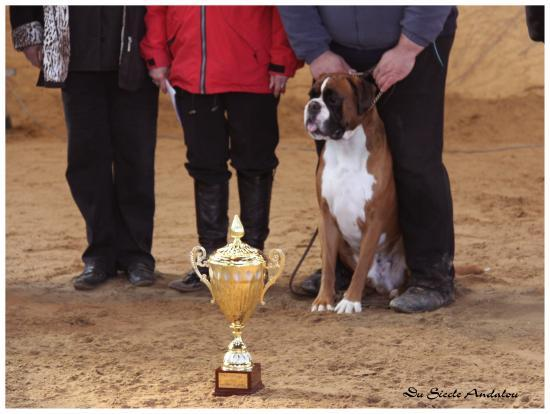 Chelton - RE Fontaine Le Sec - Best in Show - Avril 2010