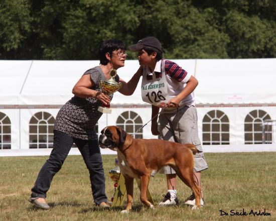 Darling - NE F. Les Eaux, Juin 2010~1ére EXC Classe Int.Femelle Fauve