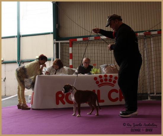 Nidia, Châteauroux 21.04.18