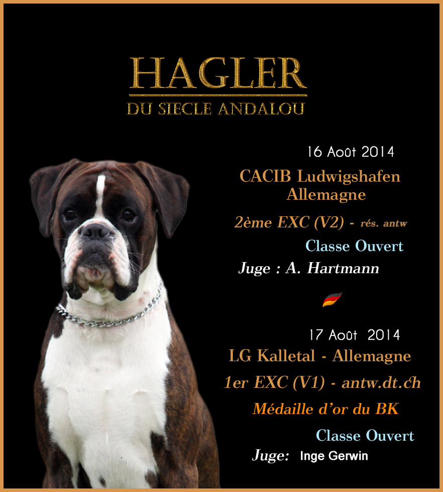 Haglar alemania agosto 2015