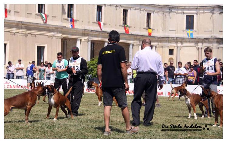 Atibox Italie 2011 - Santa Maria Di Sala