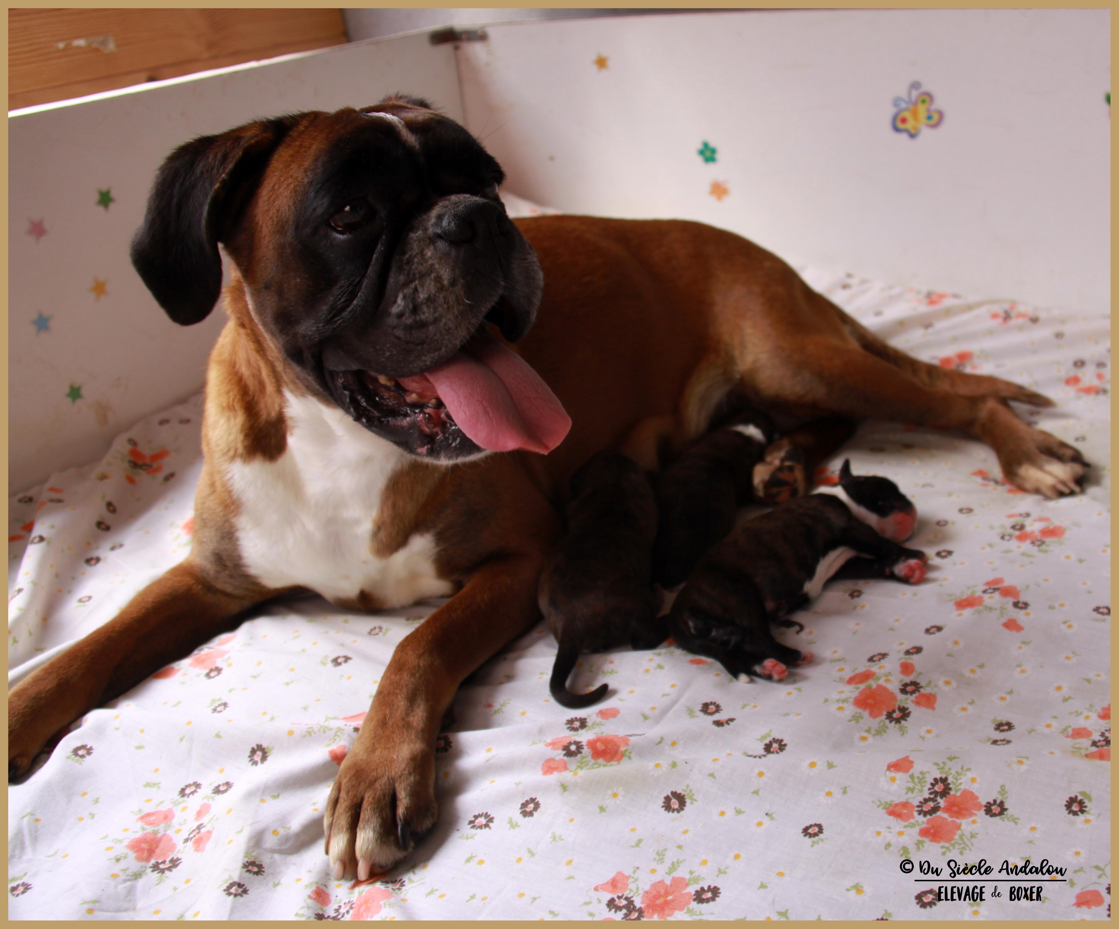 Bébés, premier jour