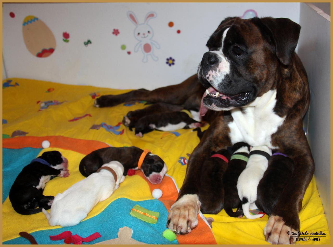 Maman & bébés, 2 jours