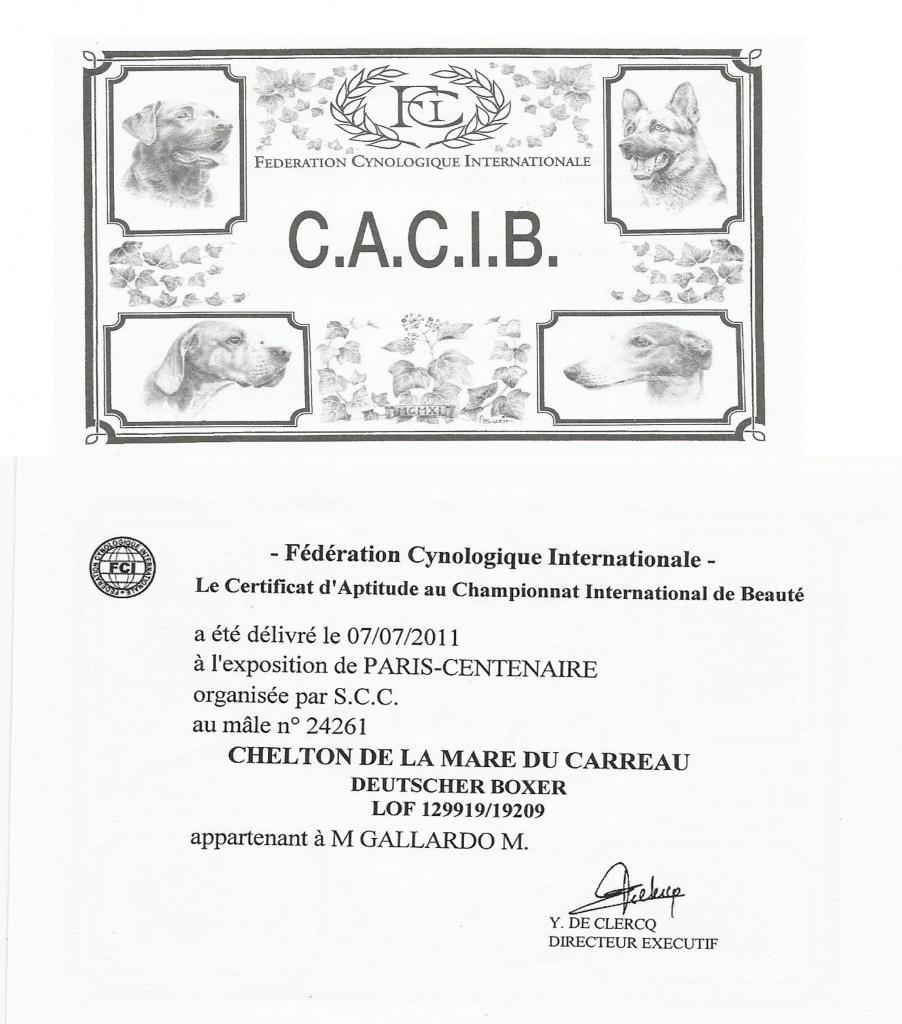 Rectification RCACIB a CACIB  Mondiale 2011 Paris