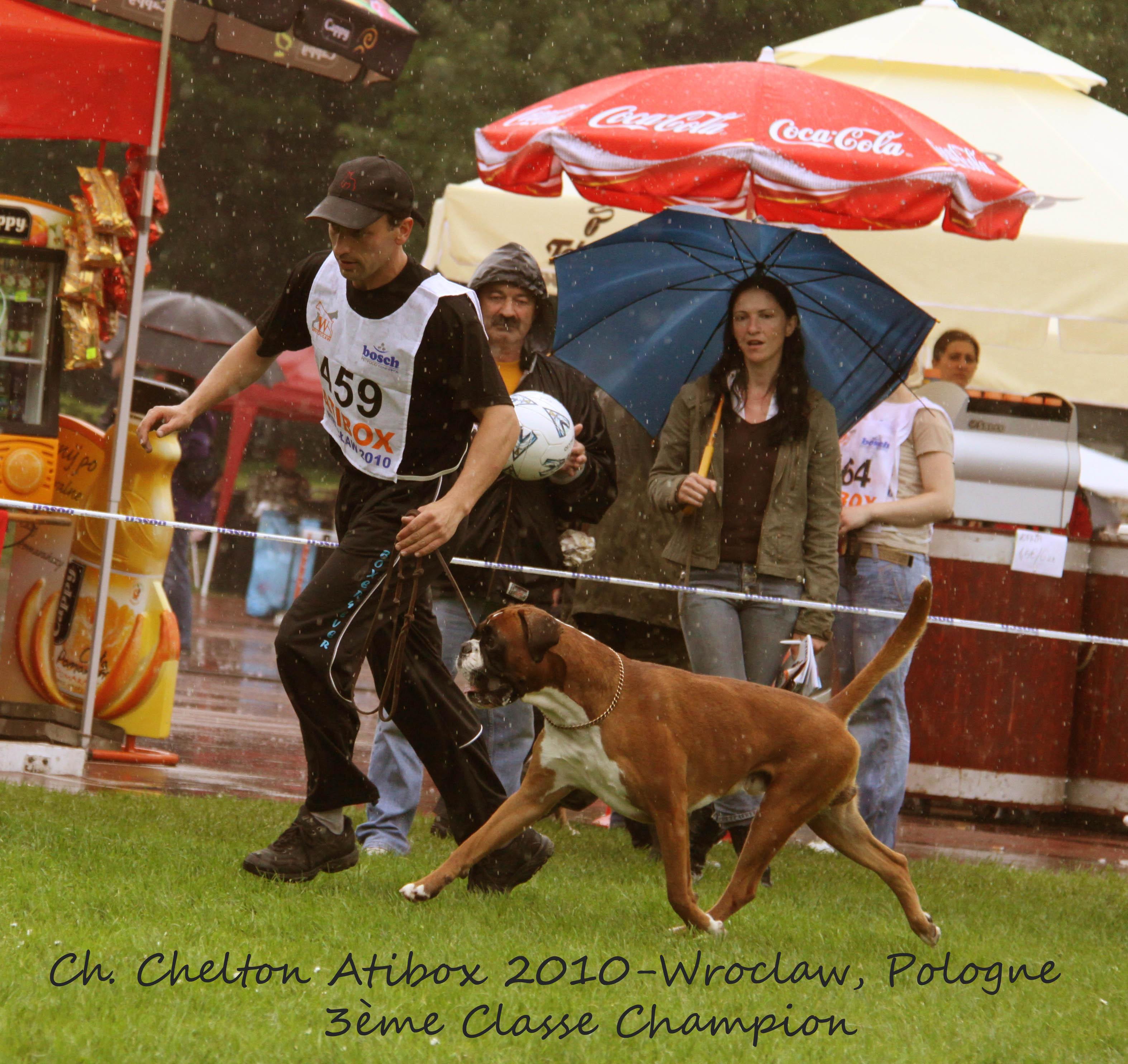 Chelton Atibox 2010 Pologne